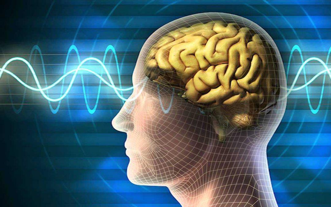 Mozkové vlny a stavy vědomí (tajemství odhaleno)
