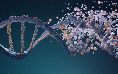Epigenetika od skutečných příčin nemocí k uzdravení