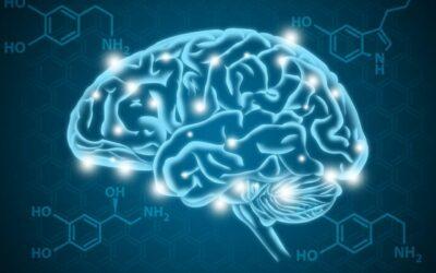 Dopamin a jeho zvýšení hladiny vs. závislost a její léčba